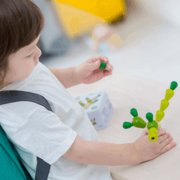 child playing with plantoys balancing cactus