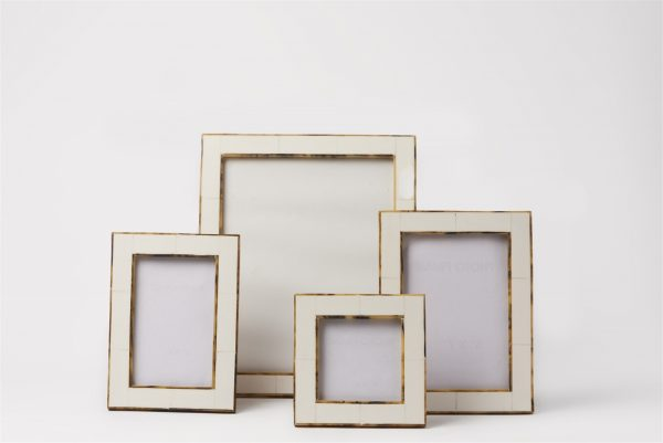 Horn Picture Frame with Tortoise Border