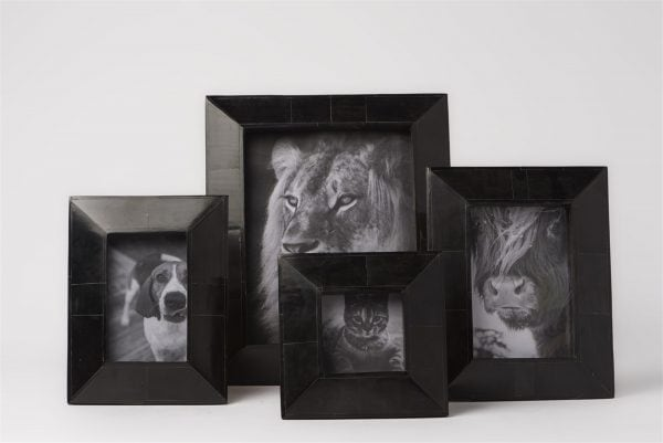 Wide Black Horn Picture Frames 1