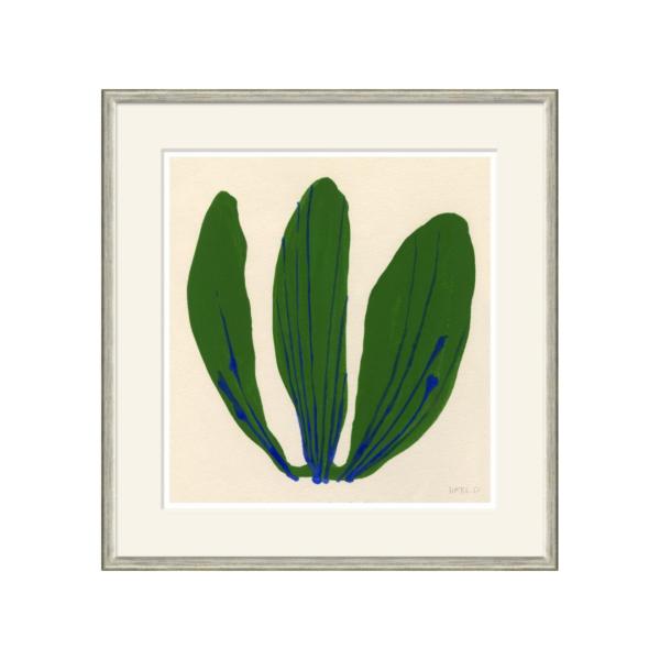 Cabbage Leaf Artwork