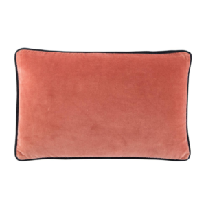 Aragon and Reflecting Pond Piped Velvet Lumbar Pillow