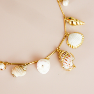 Assorted Seashell Necklace 2